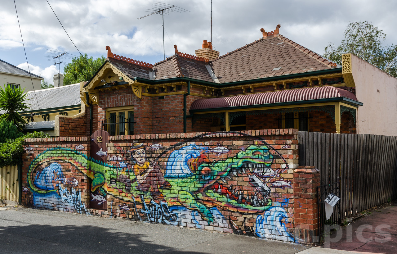 Front fence croc in Fitzroy